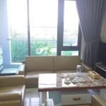 aef8fba99502685c3113 2 bedroom apartment for rent in My An Da Nang