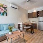 c4b4adbe5eaaa2f4fbbb Luxury 1-bedroom apartment for rent in Hai Chau Da Nang