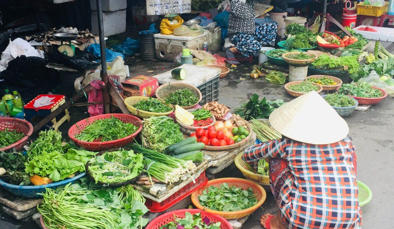 Living in Da nang, Expat in Da Nang; Apartment for rent