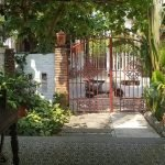 186482673 10158138705600936 7289810200286402489 n Vintage Two Bedrooms House For Rent Walking Distance To An Bang Beach Hoi An