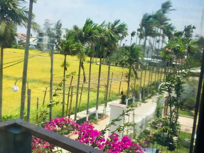 180880838 4135352246527695 8802137788542534259 n Paddy Field View Two Bedrooms House For Rent In Cam Chau Hoi An